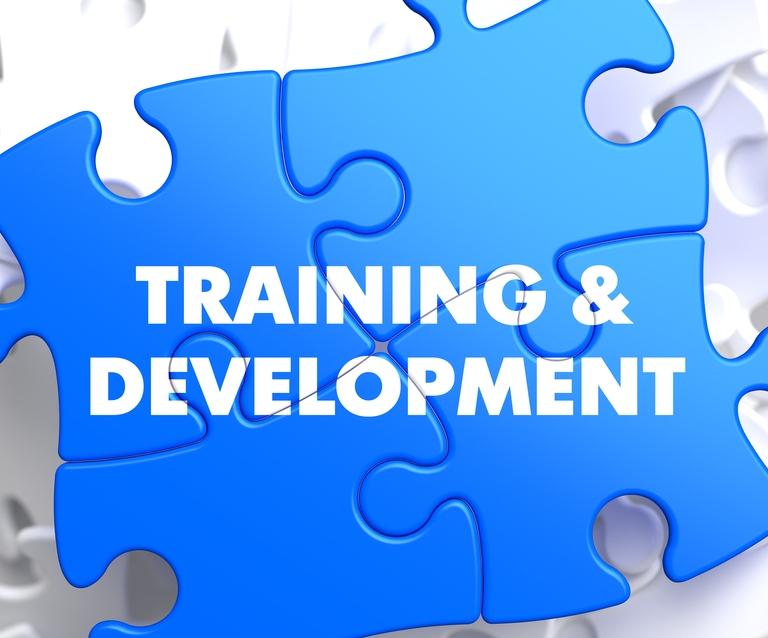 آموزش و توسعه منابع انسانی سازمان ها